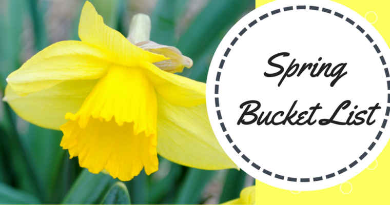 A Spring Bucket List To Complete